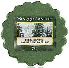 Духи, Парфюмерия, косметика Ароматический воск - Yankee Candle Evergreen Mist Wax Melts