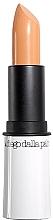 Духи, Парфюмерия, косметика Матирующий корректор-стик - Diego Dalla Palma Concealer Cover Stick