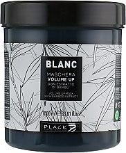 Маска для увеличения объема волос - Black Professional Line Blanc Volume Up Mask — фото N2