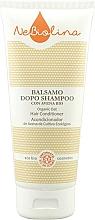 Духи, Парфюмерия, косметика Кондиционер для волос - NeBiolina Organic Oat Hair Conditioner
