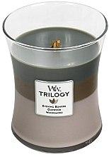 Духи, Парфюмерия, косметика Ароматическая свеча в стакане - WoodWick Hourglass Trilogy Candle Cozy Cabin
