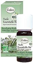 Духи, Парфюмерия, косметика Органическое эфирное масло эвкалипта лучистого - Galeo Organic Essential Oil Eucalyptus Radiata