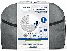 Набор - Mustela Bebe (b/gel/500ml+b/milk/300ml+cr/50ml+wipes/70+acc) — фото N1