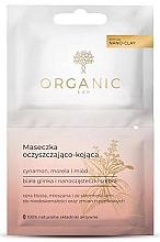 Духи, Парфюмерия, косметика Маска для жирной и комбинированной кожи - Organic Lab Cleansing And Soothing Mask Cinnamon Apricot And Honey