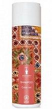 Духи, Парфюмерия, косметика Шампунь для окрашенных волос - Bioturm Shampoo Color Nr.108