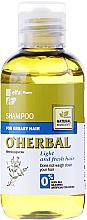 Духи, Парфюмерия, косметика Шампунь для жирных волос с экстрактом мяты - O'Herbal