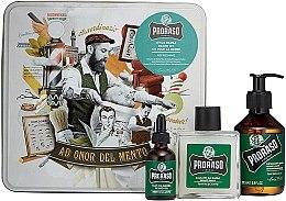 Духи, Парфюмерия, косметика Набор для бороды - Proraso Refreshing Gift Set (beard wash/200ml + beard balm/100ml + beard oil/30ml)