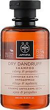 Духи, Парфюмерия, косметика Шампунь от перхоти - Apivita Shampoo For Dry Dandruff With Celery Propolis