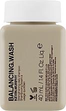 Духи, Парфюмерия, косметика Укрепляющий ежедневный шампунь для окрашенных волос - Kevin.Murphy Balancing.Wash (мини)