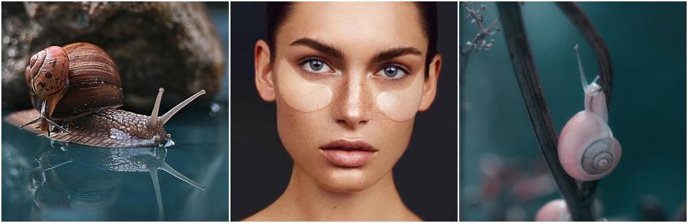 Секрет улитки: как сохранить красоту и молодость, косметика с улиточным муцином