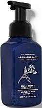 Духи, Парфюмерия, косметика Мыло-пена для рук - Bath and Body Works Aromatherapy Bergamot Chamomile Gentle Foaming Hand Soap