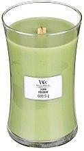 Духи, Парфюмерия, косметика Ароматическая свеча в стакане - WoodWick Hourglass Candle Fern