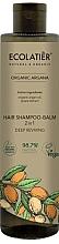 Духи, Парфюмерия, косметика Шампунь-бальзам для волос 2 в 1 - Ecolatier Organic Argana Hair-Shampoo Balm