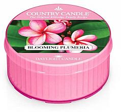 Духи, Парфюмерия, косметика Ароматическая свеча - Kringle Candle Blooming Plumeria