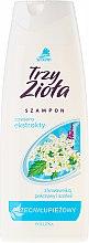 Духи, Парфюмерия, косметика Шампунь против перхоти - Pollena Savona Anti-Dandruff Shampoo