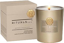 Духи, Парфюмерия, косметика Ароматическая свеча - Rituals Private Collection Orris Mimosa Scented