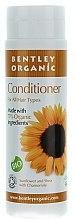 Духи, Парфюмерия, косметика Кондиционер для волос с подсолнухом, ромашкой и маслом Ши - Bentley Organic Conditioner