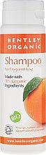 Духи, Парфюмерия, косметика Шампунь для ежедневного использования - Bentley Organic Shampoo For Frequent Use