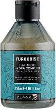 Духи, Парфюмерия, косметика Шампунь для восстановления волос - Black Professional Line Turquoise Hydra Complex Shampoo