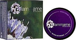 Духи, Парфюмерия, косметика Ночной крем для лица - Hammame Facial Night Cream