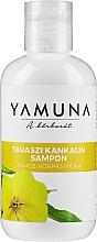 Духи, Парфюмерия, косметика Шампунь для жирных волос - Yamuna Primrose Shampoo