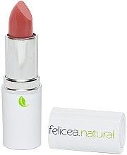 Духи, Парфюмерия, косметика Матовая помада для губ - Felicea Natural Lipstick