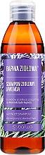 Духи, Парфюмерия, косметика Шампунь для жирных волос и склонных к перхоти волос - Barwa Herbal Lavender Shampoo