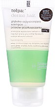 Духи, Парфюмерия, косметика Шампунь для жирных волос - Tolpa Dermo Hair Deep Cleansing Shampoo