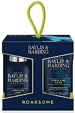 Духи, Парфюмерия, косметика Набор - Baylis & Harding Men's Citrus Lime & Mint 4 Piece Box(hair/body/wash/100ml+sh/gel/50ml+face/wash/100ml+a/sh/balm/50ml)
