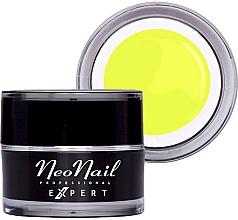 Духи, Парфюмерия, косметика Гель-краска для ногтей - NeoNail Professonal Expert Paint UV Gel