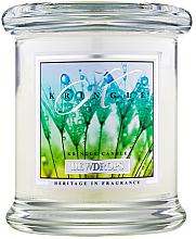 Духи, Парфюмерия, косметика Ароматическая свеча в банке - Kringle Candle Dewdrops