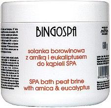 Духи, Парфюмерия, косметика Соль для ванн с экстрактом арники и евкалиптом - BingoSpa Brine Mud With Arnica And Eucalyptus