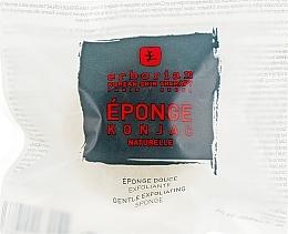 Духи, Парфюмерия, косметика Деликатный спонжик-эксфолиант для лица и тела - Erborian Konjac Sponge